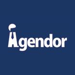 Agendor 696 logo